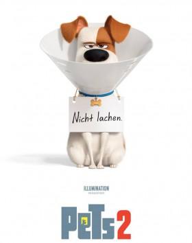 pets2-film